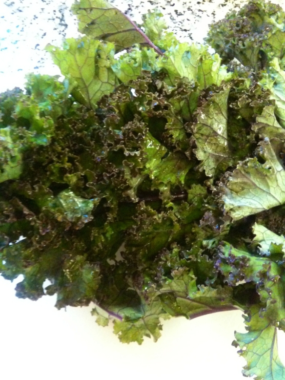 Kale Greens Red Russian