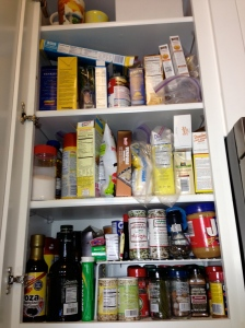nyc tiny kitchen pantry bug prevention