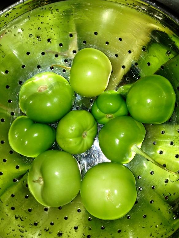Tomatillo sauce cinco de mayo