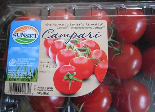 dinner pasta summer brie campari tomatoes