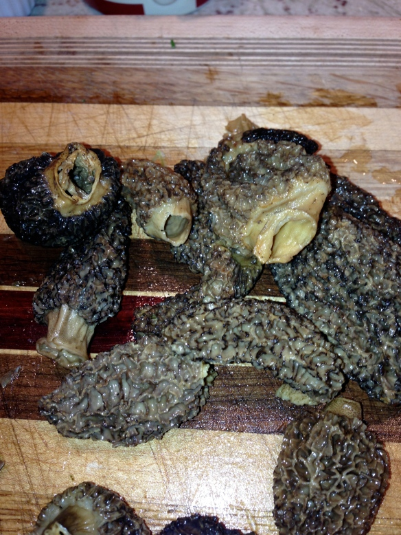morel mushrooms thanksgiving stuffing