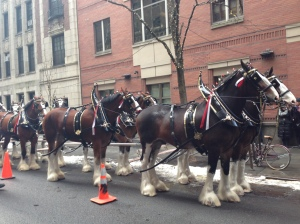 superbowl soup dinner recipe budweiser horses