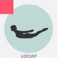 OK - it's called a Locust